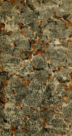 Cover of: Svensk botanik   J. W. Palmstruch